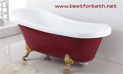 Classic Clawfoot Tub w/ Regal brass Lion Feet, Gold telephone style tub faucet   - Image 3