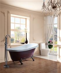 Classic Clawfoot Tub w/ Regal brass Lion Feet, Gold telephone style tub faucet   - Image 2